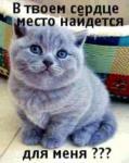 Фотография пользователя danilka1989